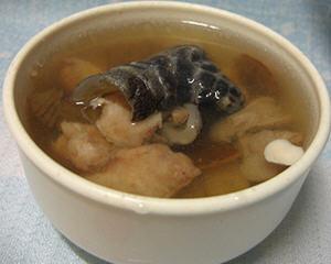 鳄鱼肉二陈汤