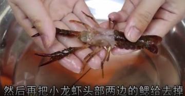 龙虾怎么洗简单又干净方法和窍门图解2