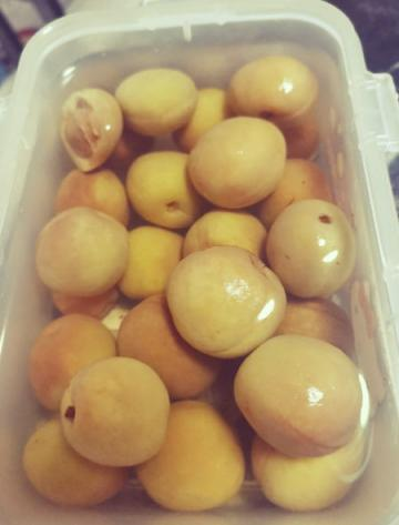 杏子加冰糖的腌制方法(处理酸涩杏子最佳方法)1
