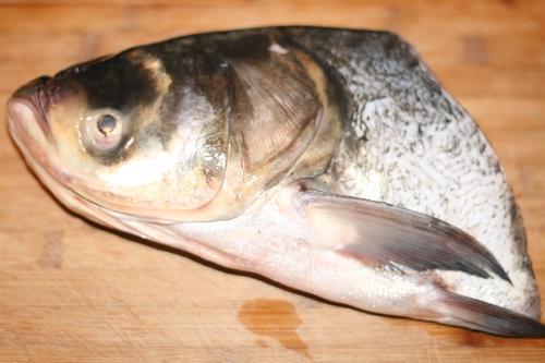 胖头鱼长什么样?胖头鱼图片发出来看看1