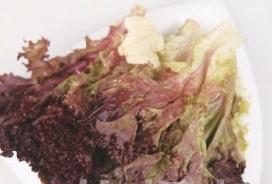 蒜香紫生菜1