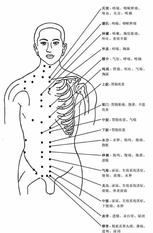 人体穴位有哪些?对应穴位都有什么功效 ?4