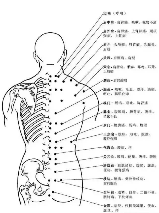 人体穴位有哪些?对应穴位都有什么功效 ?6