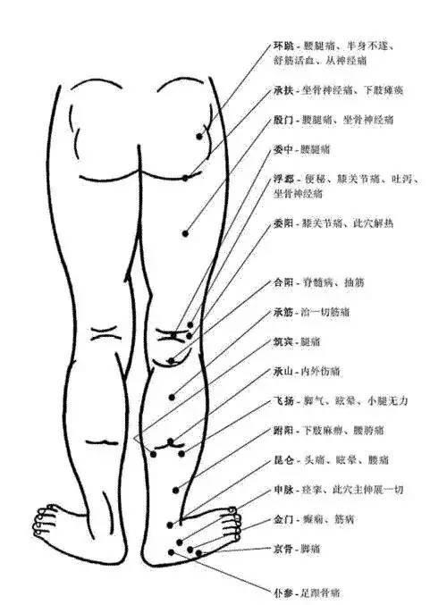 人体穴位有哪些?对应穴位都有什么功效 ?11