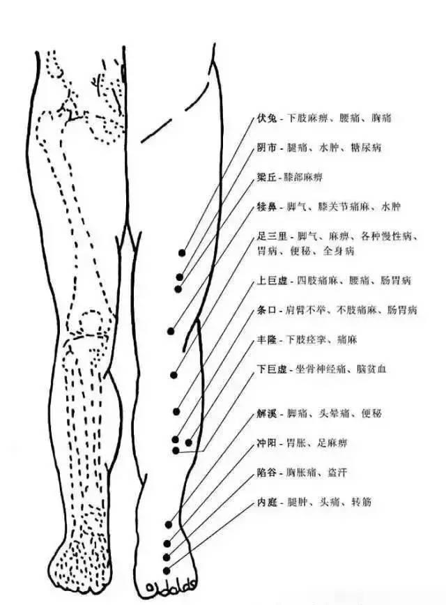人体穴位有哪些?对应穴位都有什么功效 ?9