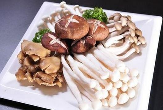 菌菇食谱大全