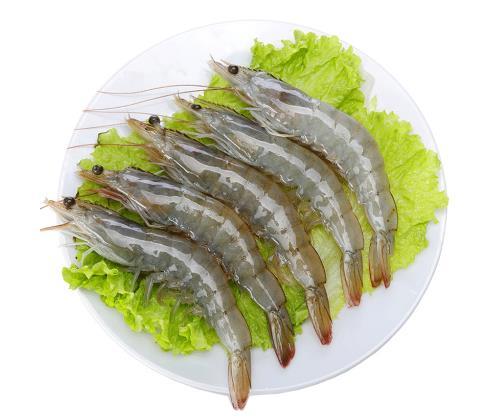 鲜虾食谱大全
